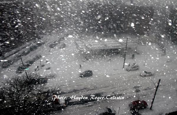 Bomb-Cyclone-hits-brookly-hayden-celestin