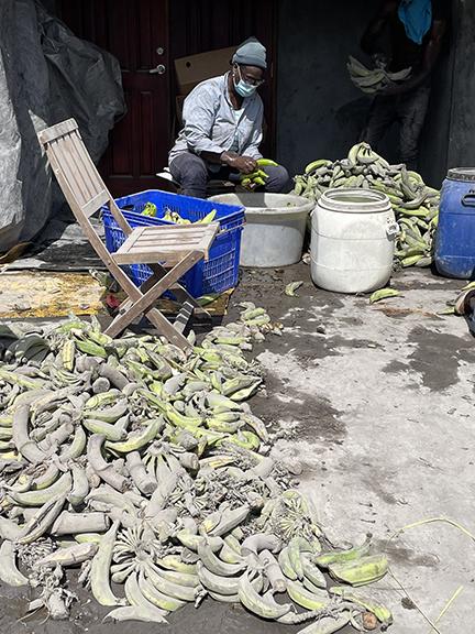 saint-vincent-plantain-farmer